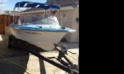 1973 Marlin 18' ski boat. Inboard/outboard drive. New seats and biminy top. $1200 obo. --