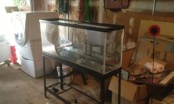 """large rectangular fish tank. 55 gallons. wrought iron stand. tank is 51""""long x 15"""" wide x 23""""high. measures 54"""" high on stand."""