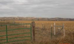 Best deal on the area with center pivot, irrigation pumpsand lines, $80k value. Compare to farm land without pivot! Located on quiet paved road N. of Marsing. This parcel can be purchased as package withtwo homesand