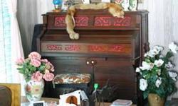 This Estry pump Organ is very nice. Plays well, and we also went through the whole insides, and replaced anything that needed it with original parts. That cost!! The wood is Walnut. The stool goes with it. We were told the stool was worth as much