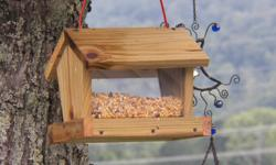 The pic is of a bird feeder...we paint them too...Tennessee Vols or your favorite team as well as sunflowers.  =- or lakenorris@hotmail.com We also make the teac cup in a saucer feeder and water hole....very cute and hangs.  Not in stock