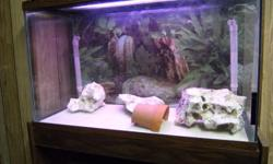 I have 5 fish tanks for sale. 30 gallon Hex 30 gallon long, 20 gallon long, 2 10 gallon tanks. they all have under gravel filter system, includes pump, decorations, stand, filter, gravel, heater, rocks, and thermometer. tanks have hoods with light.