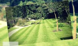 When you choose Handy Lawn & Tree Services,..you are choosing a Fully Licensed and Insured professional company dedicated to your needs. You will have the unique and personal experience that is sure to leave you satisfied -Free Estimate -24/7