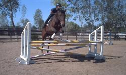 T.L.C. Riding Center has numerous nice hunter/jumper horses for sale also ponies, we are located in Norco, prices range from 1500.00 , we are a state owned Equestrian Center which provide riding lessons and boarding and training. please go to our web site