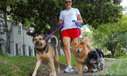 Hi, let's start off with me telling you a little about myself and my team. I started pet sitting in 2002 and I have a long career in pet experience, medicating, care giving, and nurturing many animals of all ages and sizes. My services are precise,