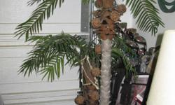 Need a change in your home?  How about a palm tree that does make you think it's real!!  The tree stands about 6 ' from the base to highest palm leaf. Call STEVE!