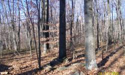 If you are looking for a place to just get away or a great place to build your dream home, we have the perfect property. It is secluded, quiet, and beautiful.It is also wooded. Located in Fairfield Twp., Between Ligonier and New