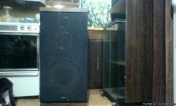 Stero Speaker