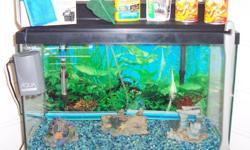 You get the 20 Gal. Aquarium, Aquarium Hood w/Incandescent Light, Aqua-Tech 20/40 Filter Cartridges, Aquatop HT-100 Watt Aquamarine Heater, Aqua-Tech 20/40 Power Filter, Aqua Culture 20-60 Gal. Double Outlet Aquarium Air Pump and Two Bubblers. I paid
